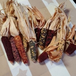 🦕3/$10 Vtg Fall Corn Cobs & Husks Decorating